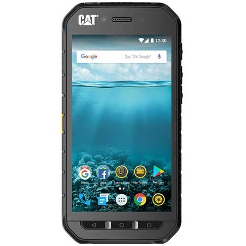 Cat S41 Price In Algeria