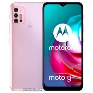 Motorola Moto G31 Price In Algeria